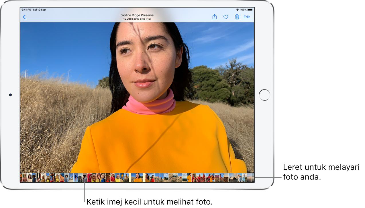 Foto skrin penuh dengan imej kecil foto lain daripada pustaka merentas bahagian bawah skrin. Di bahagian kiri atas adalah butang Balik, yang membawa anda kembali untuk melayari. Di sepanjang atas kanan adalah butang Kongsi, Suka, Padam dan Edit.