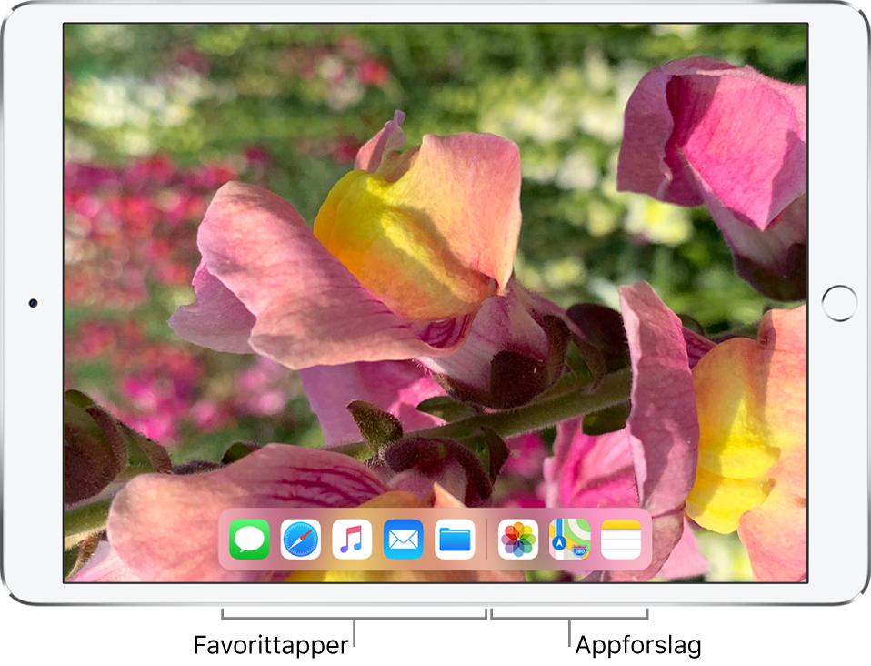 Dock som viser fem favorittapper til venstre og tre forslåtte apper til høyre.