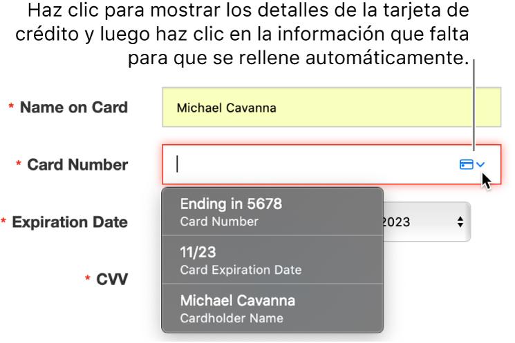 Información de la tarjeta de crédito faltante, con el autorrelleno mostrando las opciones disponibles.