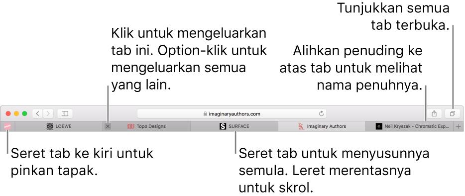Tetingkap Safari dengan tab.