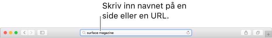 Det smarte søkefeltet i Safari, der du kan skrive inn en sides navn eller URL.