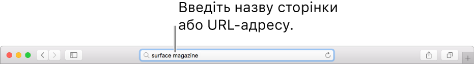 Розумне поле пошуку браузера Safari, у якому вводиться назва або URL-адреса сторінки.