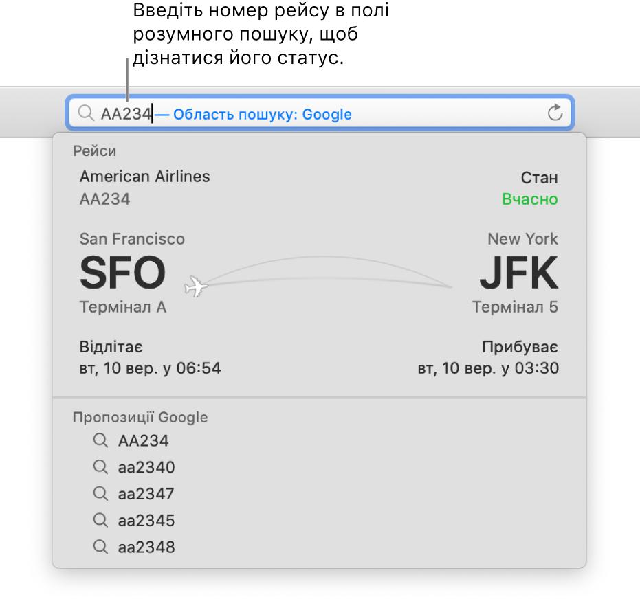 Номер рейсу, введений у поле розумного пошуку, і статус відразу під ним.