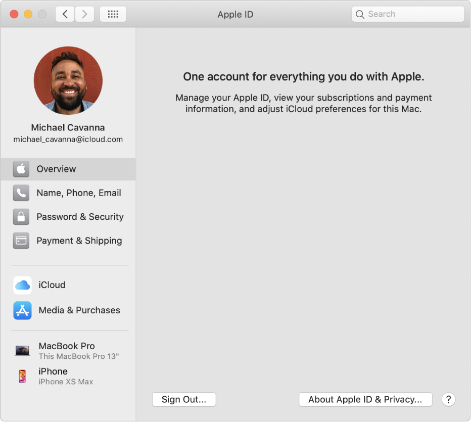 Apple ID preferences showing a sidebar of different types of account options you can use and the Overview preferences for an existing account.