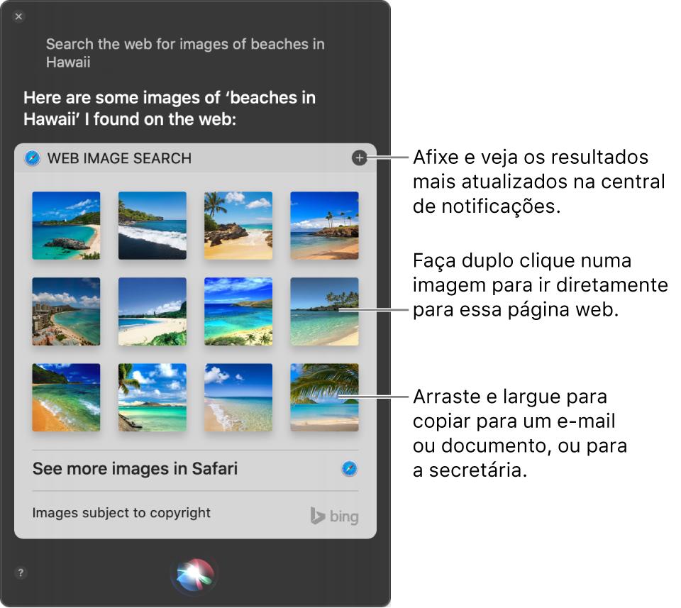 """A janela de Siri a mostrar os resultados ao pedido """"Search the web for images of beaches in Hawaii."""". Pode afixar os resultados na central de notificações, fazer duplo clique numa imagem para abrir uma página da web que contenha uma imagem ou arrastar uma imagem para um e-mail ou documento ou para a secretária."""