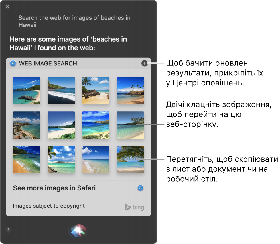 Вікно Siri із результатами Siri на ваш запит «Search the web for images of beaches in Hawaii.». Ви можете закріпити результати в Центрі сповіщень, двічі клацнути зображення, щоб відкрити веб-сторінку із зображенням, або перетягнути зображення в електронний лист або документ чи на робочий стіл.