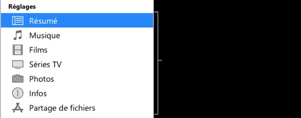 L'option Résumé est sélectionnée dans la barre latérale à gauche. Les types de contenu qui s'affichent peuvent varier en fonction de votre appareil et des contenus de votre bibliothèque iTunes.