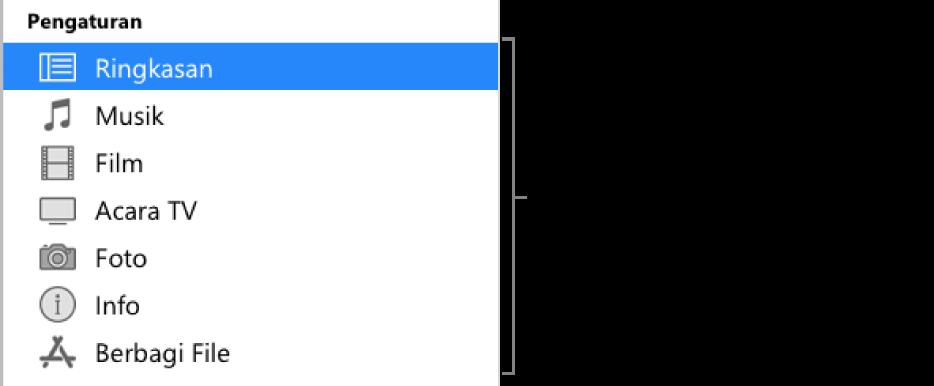 Ringkasan dipilih di bar samping di sebelah kiri. Jenis konten yang muncul dapat bervariasi, tergantung pada perangkat Anda dan konten perpustakaan iTunes Anda.