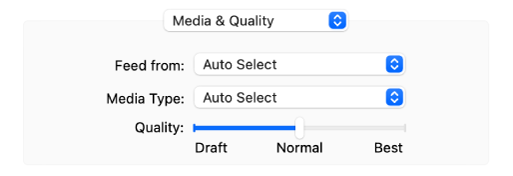 The Media & Quality option showing the Feed from and Media Type pop-up menus and a Quality scale slider.