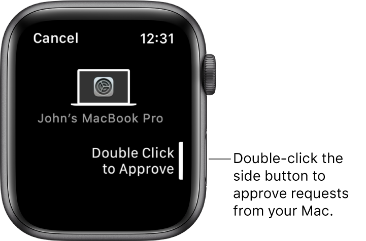 Apple Watch showing an approval request from a MacBook Pro.