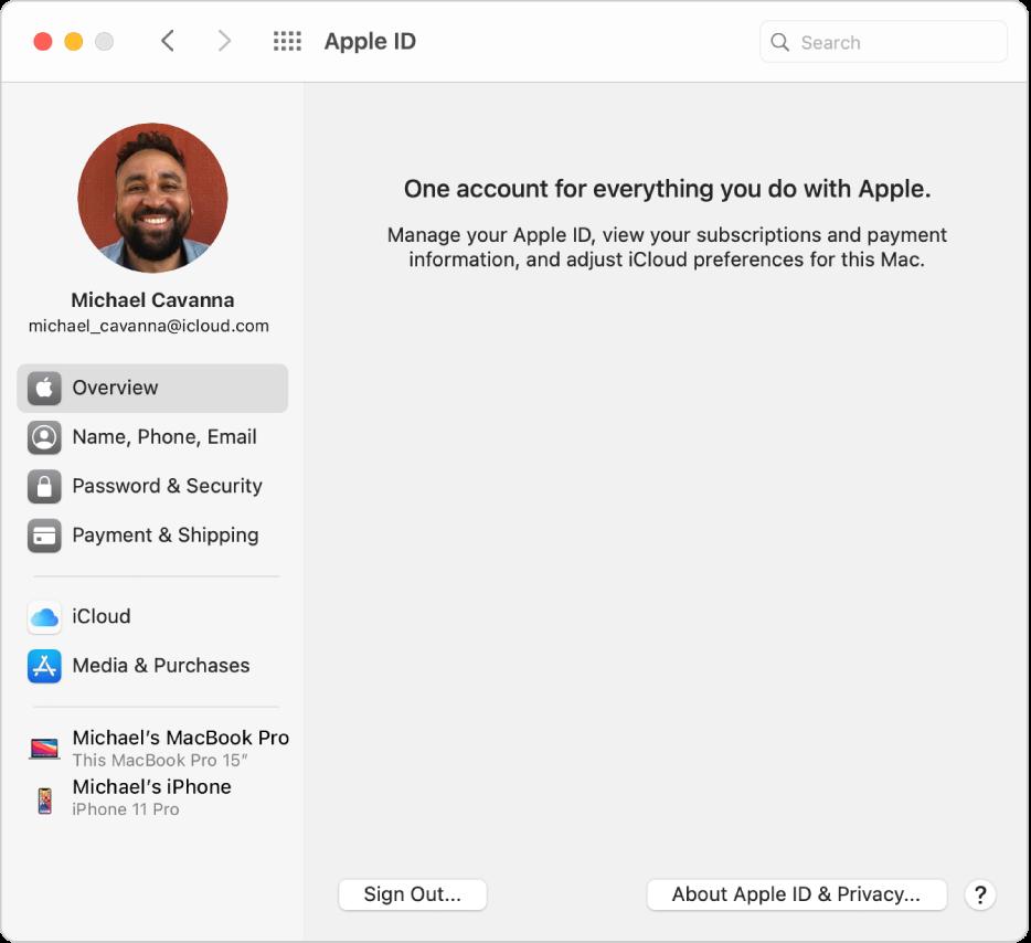 Inställningspanelen Apple-ID med ett sidofält med olika typer av kontoalternativ som du kan använda och inställningspanelen Översikt för ett befintligt konto.