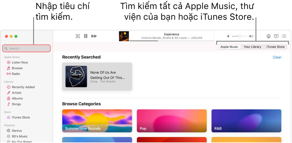 Cửa sổ Apple Music đang hiển thị trường tìm kiếm ở góc trên cùng bên trái, danh sách các danh mục ở giữa cửa sổ và Apple Music, Thư viện của bạn và iTunes Store có sẵn ở góc trên cùng bên phải. Nhập tiêu chí tìm kiếm vào trường tìm kiếm, sau đó chọn tìm kiếm tất cả Apple Music, chỉ thư viện của bạn hoặc iTunes Store.