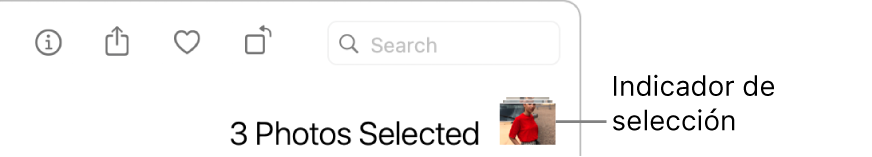 Un indicador de selección con tres fotos seleccionadas.