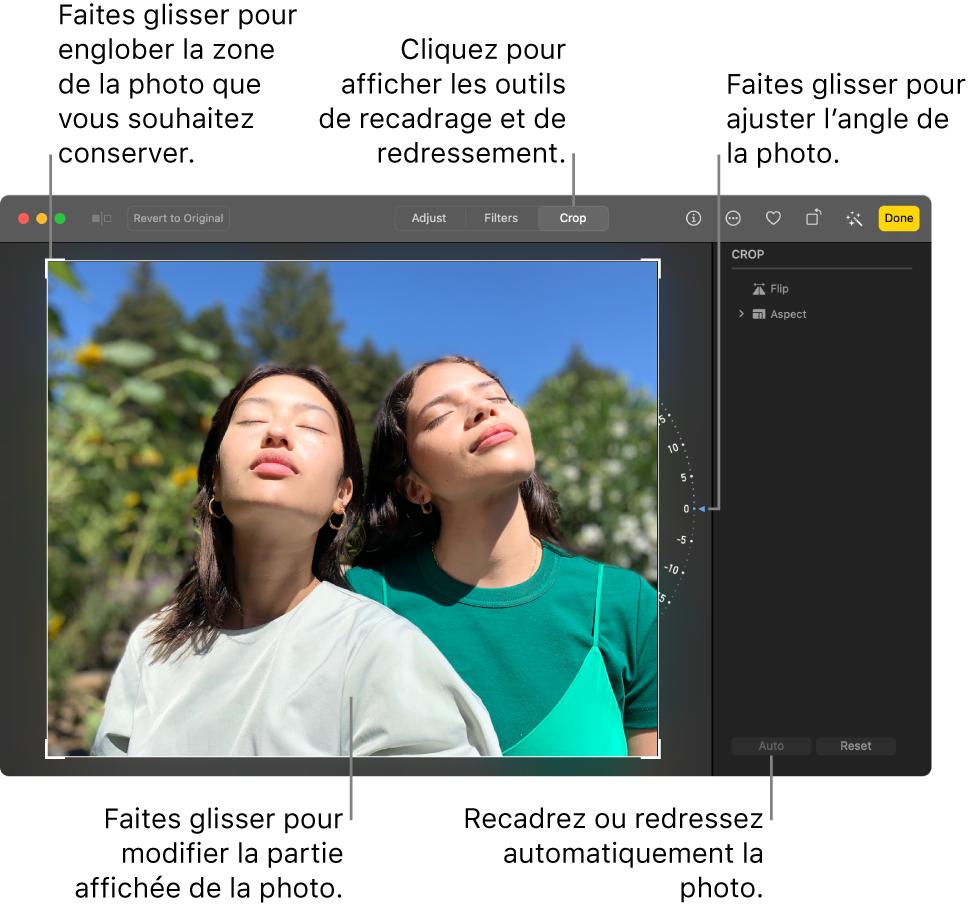 Une photo en mode édition, avec l'option Recadrer sélectionnée dans la barre d'outils, un rectangle de sélection autour de la photo, une roue d'inclinaison à droite de la photo et un bouton Auto. en bas à droite.