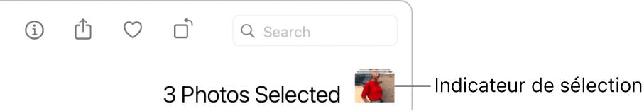 Un indicateur de sélection montrant que trois photos sont sélectionnées.
