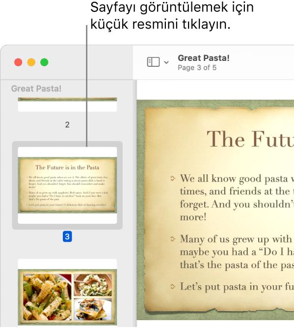 Küçük resimleri kenar çubuğunda görüntülenen bir PDF.