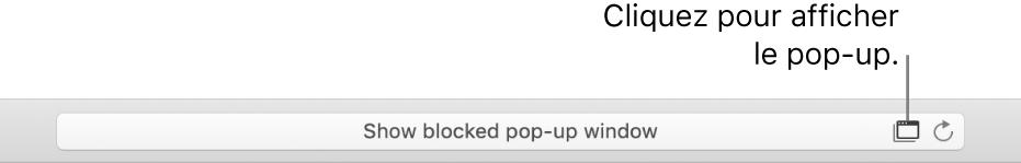 Champ de recherche intelligente avec une icône permettant d'autoriser les pop-up sur la droite.