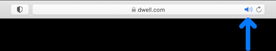 スマート検索フィールドにある「オーディオ」ボタン。