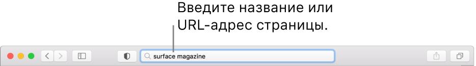 Поле смарт-поиска, расположенное поцентру панели инструментов Safari.