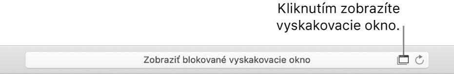 Pole Dynamického Vyhľadávania zobrazujúce ikonu napravo, aby povolila vyskakovacie okná.