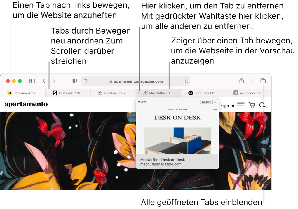 Das Safari-Fenster mit mehreren geöffneten Tabs. Der Zeiger befindet sich über einem Tab, und es wird die Vorschau einer Webseite angezeigt.