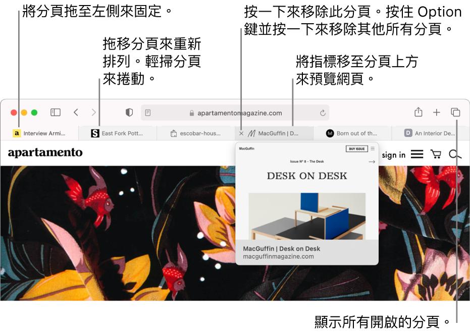 Safari 視窗包含幾個已開啟的分頁,指標位於顯示網頁預覽的分頁上方。