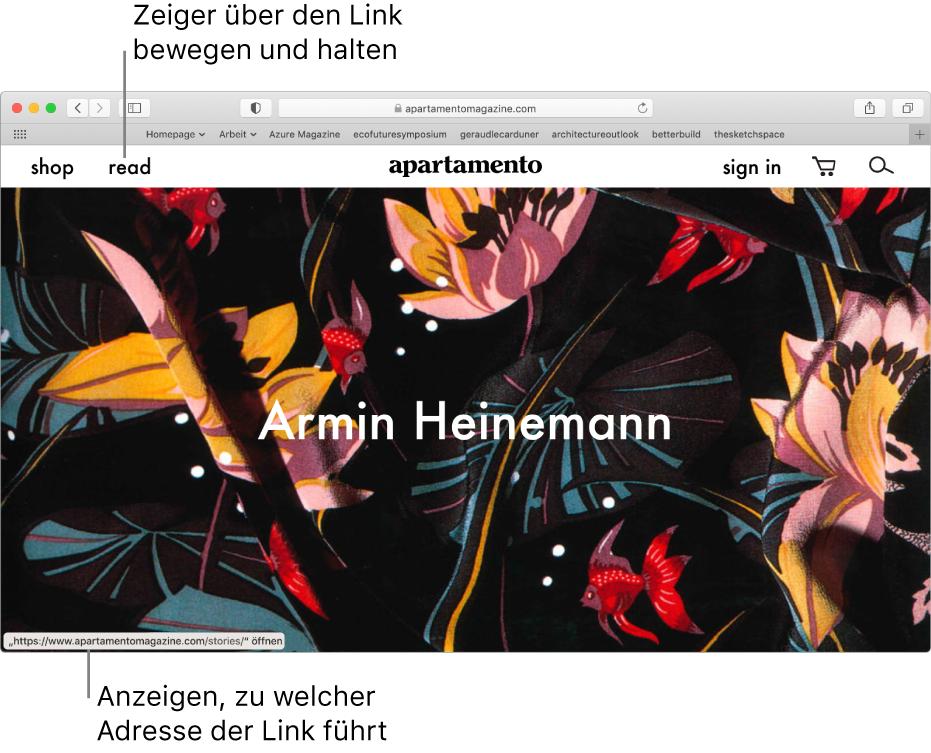 Der Zeiger über einem Link auf einer Webseite; die zugehörige URL wird unten in der Statusleiste des Fensters angezeigt.