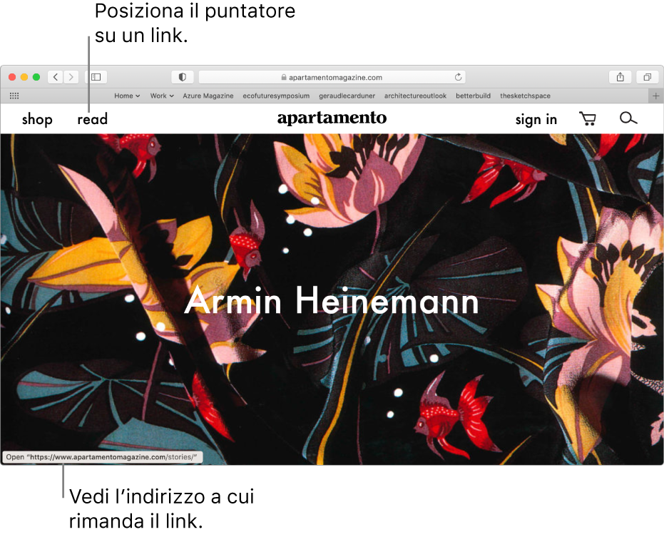 Il puntatore sopra un link in una pagina web, con l'URL del link mostrato nella barra di stato nella parte inferiore della finestra.