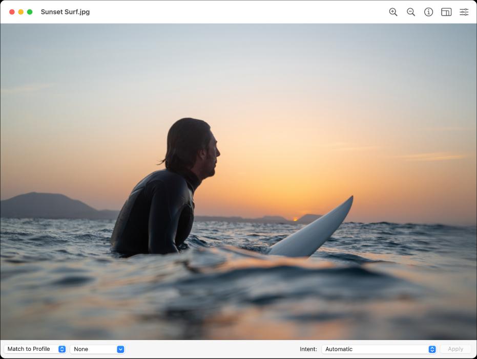 La ventana de Utilidad ColorSync con la imagen de un hombre sentado sobre una tabla de surf en un océano o bahía.
