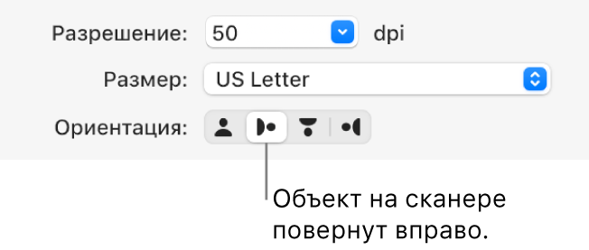 Кнопки ориентации вокне «Сканер». Выделенная кнопка означает, что объект насканере повернут вправо.