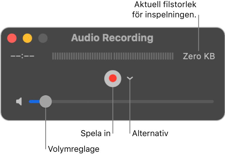 Ljudinspelningsfönstret med inspelningsknappen och alternativpopupmenyn i mitten av fönstret och volymreglaget längst ned.