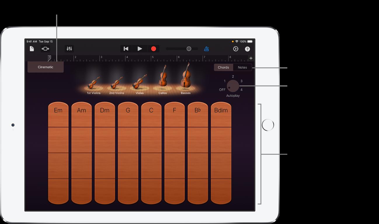 Touch-instrument Snaarinstrumenten