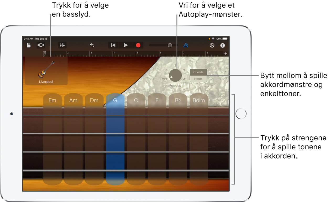 Touch-instrumentet Bass