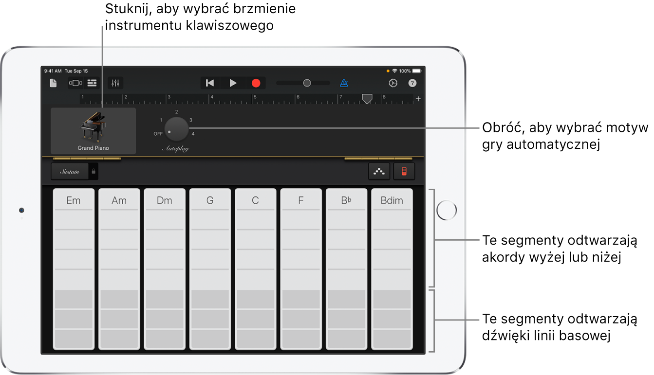 Paski akordów instrumentu klawiszowego