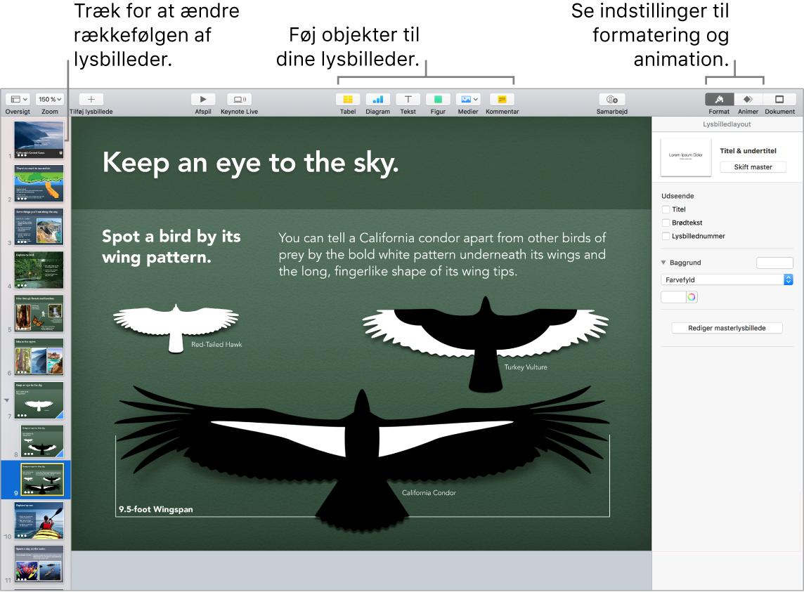 Et Keynote-vindue, der viser, hvordan du flytter rundt på lysbilleder, og identificerer knapper, der giver dig mulighed for at føje objekter til lysbilleder, inkl. indstillinger til format og animation.