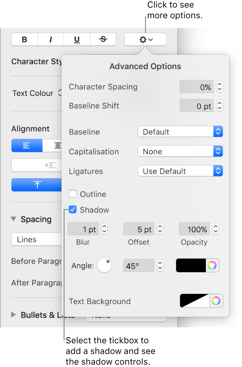 The Advanced Options open with the Shadow tickbox selected and controls for setting blur, offset, opacity, angle and colour.