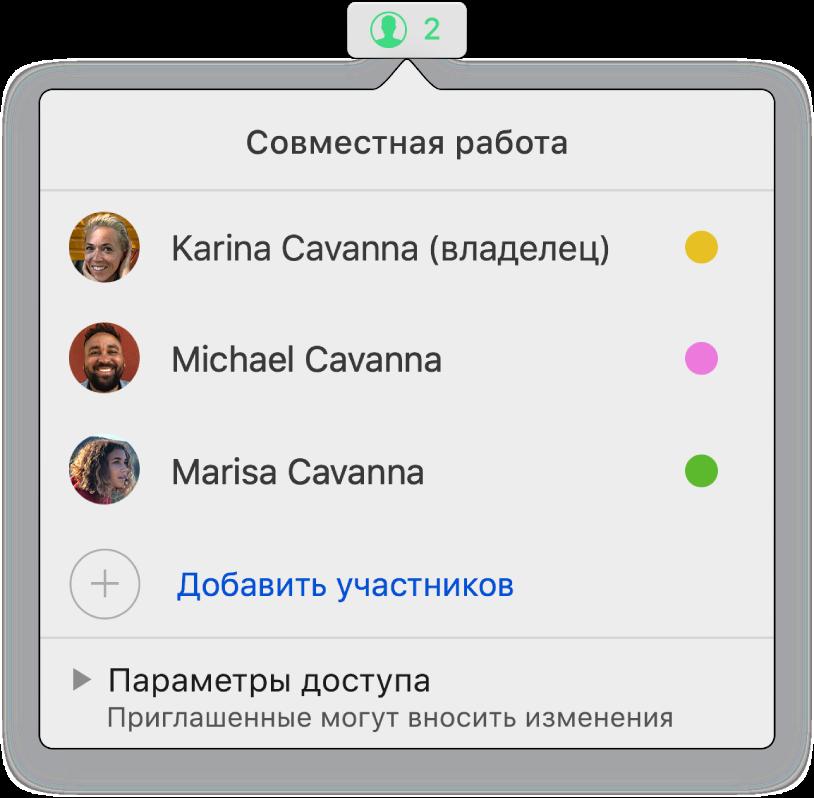 Меню «Совместная работа», в котором показаны имена людей, совместно работающих над презентацией. Под именами находятся параметры общего доступа.
