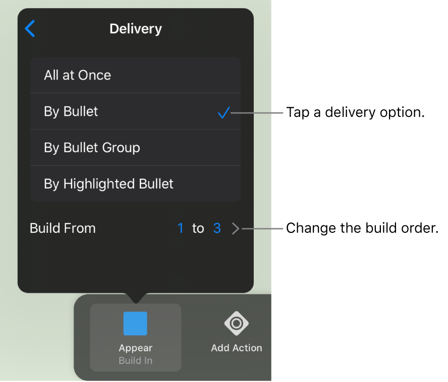 Delivery options in the Build In pane.