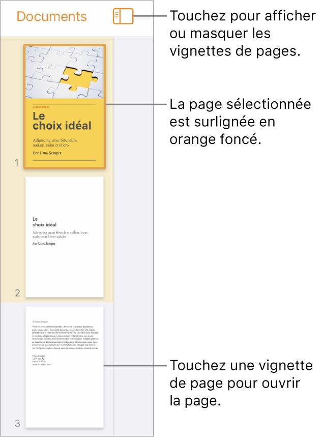 Présentation Vignettes de page à gauche de l'écran avec une page sélectionnée. Le bouton «Options de présentation» est situé au-dessus des vignettes.