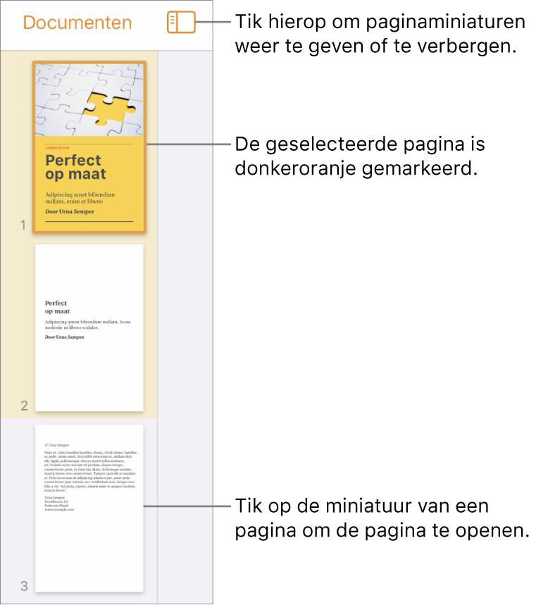 De paginaminiatuurweergave aan de linkerkant van het scherm waarin één pagina is geselecteerd. Boven de miniaturen staat de knop 'Weergaveopties'.