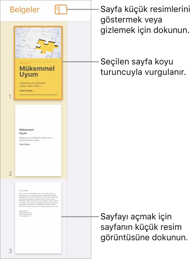 Ekranın sol tarafında bir sayfa seçili şekilde Sayfa Küçük Resimleri görüntüsü. Görüntü Seçenekleri düğmesi, küçük resimlerin üst tarafındadır.