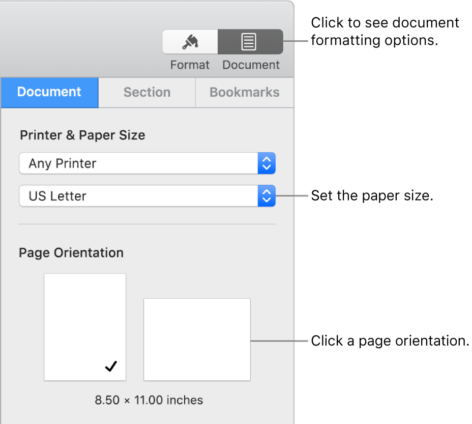 The Document sidebar with the Document tab at the top of the sidebar selected. In the sidebar are a pop-up menu to set paper size, and buttons for portrait and landscape page orientation.