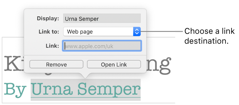 The Link Settings pop-over with a Display field, Link To (set to Web page) and Link field. The Remove button and Open Link buttons are at the bottom of the pop-over.