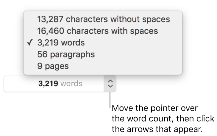 The word count popover showing the number of words in the document.
