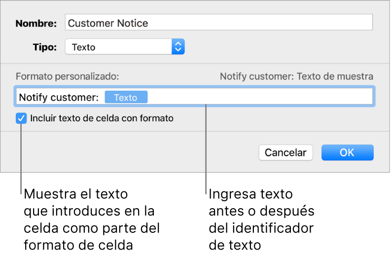 La ventana de formato de celda personalizado con controles para seleccionar formatos de texto personalizados.