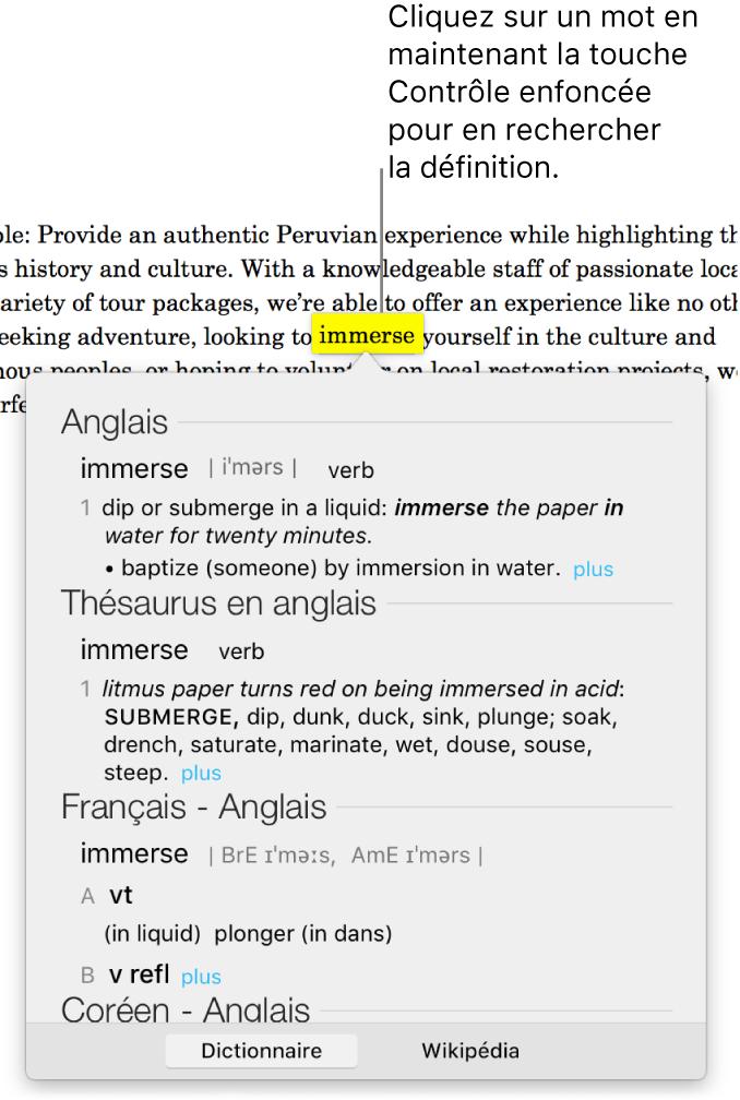 Un paragraphe avec un mot surligné et une fenêtre contenant sa définition et des synonymes. Deux boutons en bas de la fenêtre fournissent des liens vers le dictionnaire et vers Wikipedia.