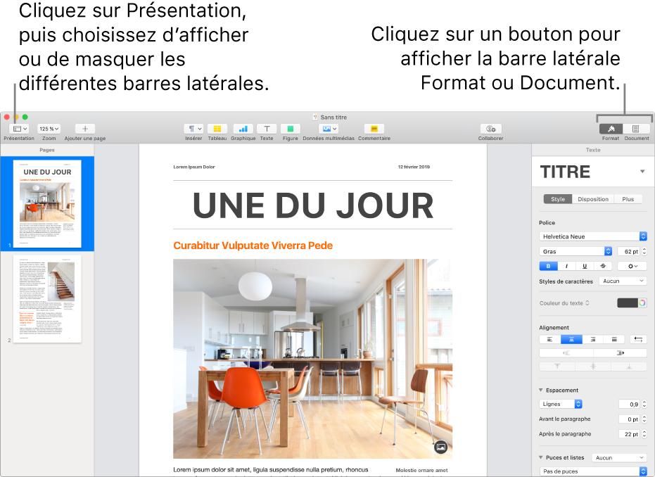 La fenêtre Pages, accompagnée de légendes traitant du bouton du menu Présentation et des boutons Format et Document dans la barre d'outils. Les barres latérales sont visibles à gauche et à droite.