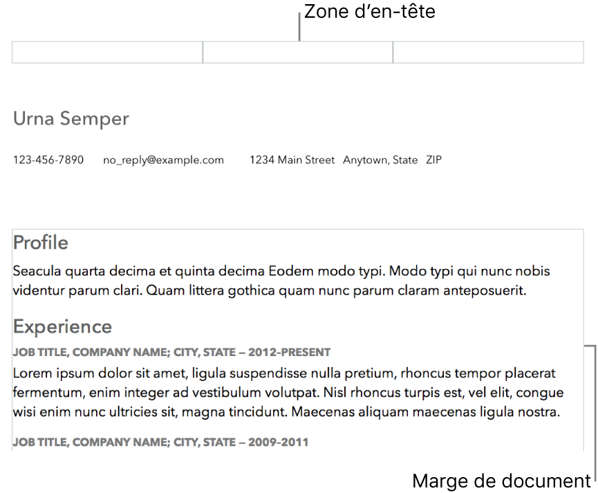 Mode d'affichage Disposition montrant la zone d'en-tête et les marges de document.