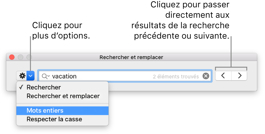 La fenêtre Rechercher et remplacer avec les légendes du bouton pour afficher les options de Rechercher, Rechercher et remplacer, Mots entiers, Respecter la casse; les flèches de navigation sont sur la droite.