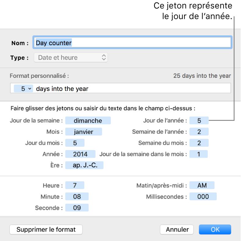 Fenêtre de format de cellule personnalisé présentant les commandes permettant de choisir un format de date et d'heure personnalisé.